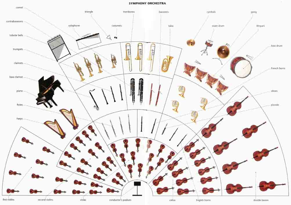 SYMPHONY ORCHESTRA: triangle, cymbals, conductors, podium, English horns, cornet, contrabassoons, tubular bells, trombones, xylophone, bassoons, trumpets, castanets, clarinets, tuba, gong, bass clarinet , snare drum, timpani, piano, flutes, bass drum, harps, French horns, oboes, piccolo, first violins, second violins ,etc.